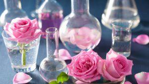 Proprietà e benefici degli Oli Essenziali
