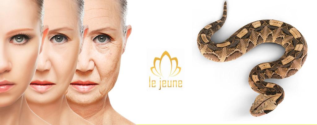 LeJuene Crema Antirughe al Siero di Vipera recensione prodotto